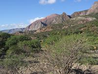 National Park Toro Toro