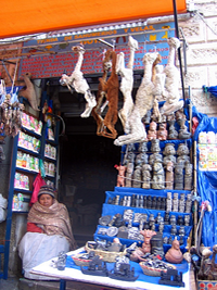 Mercado de Brujas