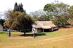 Candelaria Eco-Albergue, Buena Vista