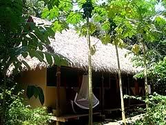 Madidi Jungle Eco Lodge, Rurrenabaque