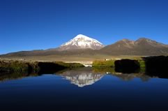 Sajama Park Tour, Full Day (12 hours)