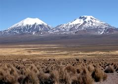 Sajama Park and Lauca River Tour, La Paz