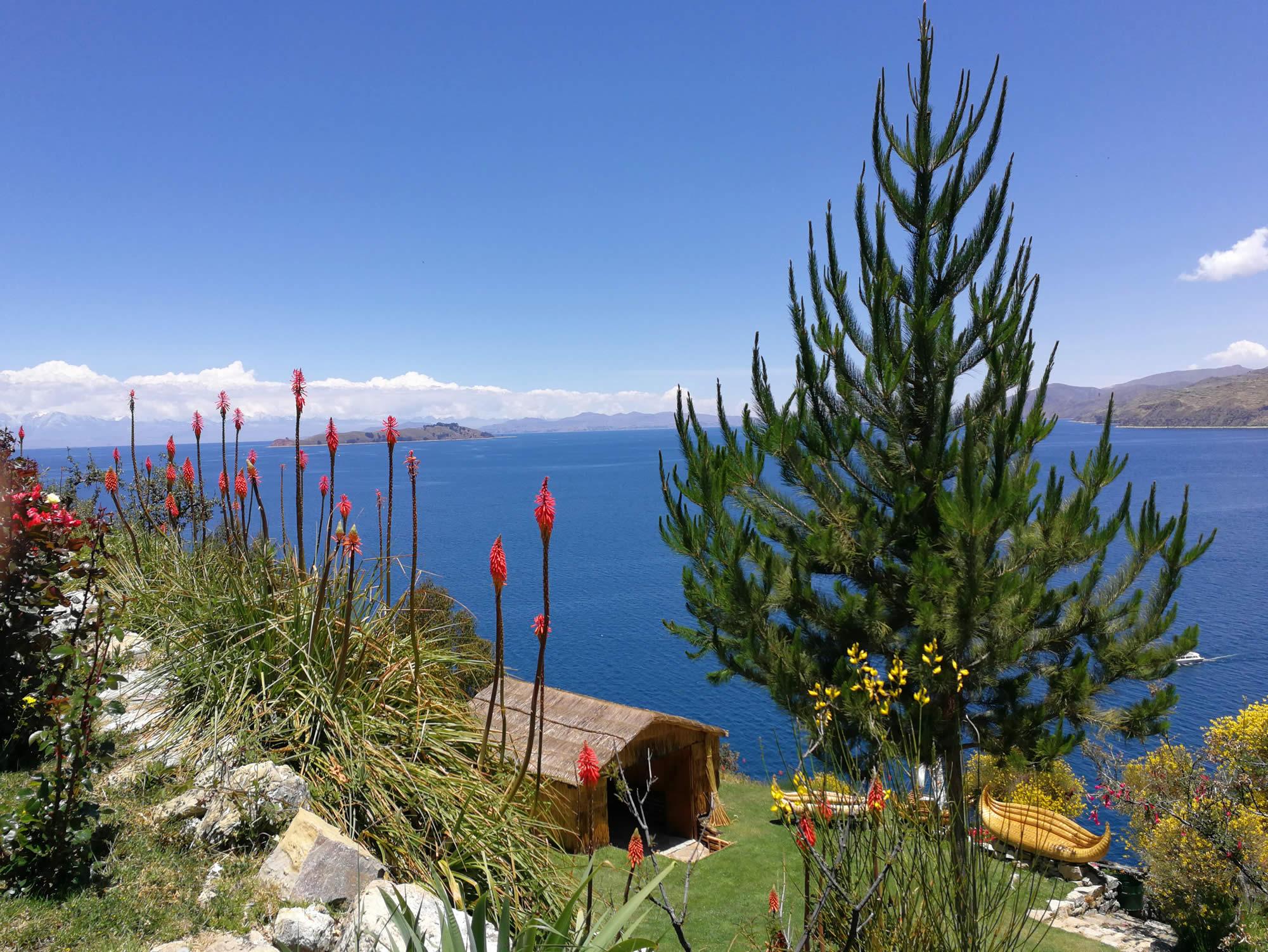 Año Nuevo 2020 abordo del Catamaran, La Paz